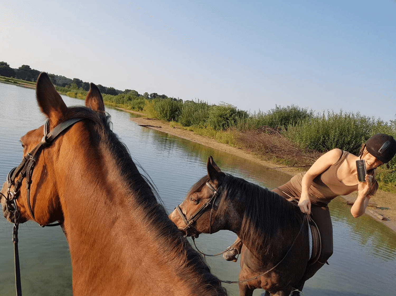 Horse back-riding